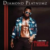 Diamond Platnumz - Baila ft. Miri Ben-Ari